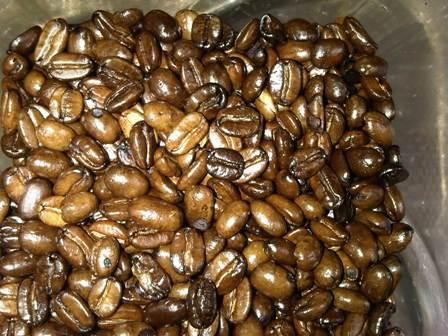 Premium Coffee: Arabica Mandhailing